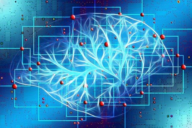 Gehirn künstliche Intelligenz